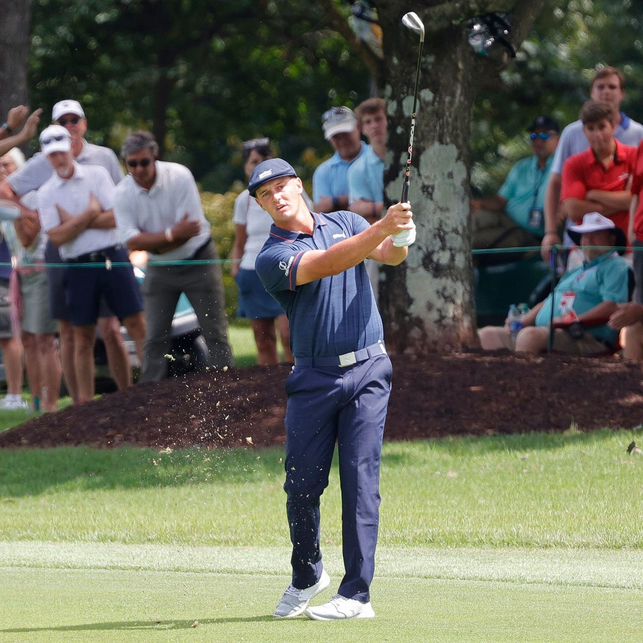 Knous, McNealy tied atop Fortinet's leaderboard