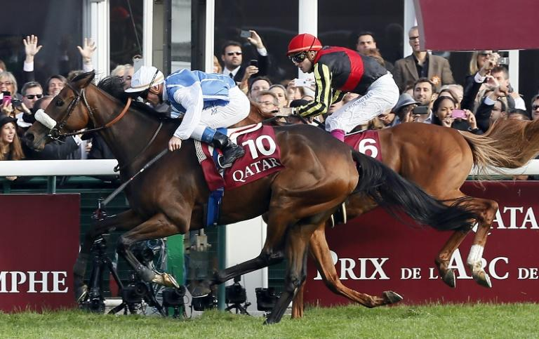 Japan dreams their Deep Bond with Arc will end in elusive victory